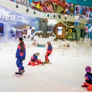 جاذبه های گردشگری دبی (پیست اسکی دبی)