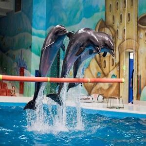 پارک خور (نمایش دلفین ها)