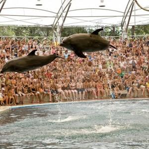 هتل ریکسوس پریمیوم آنتالیا (نمایش دلفین ها)