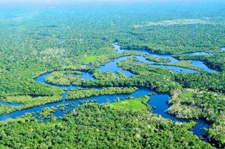 آمازون بزرگترین رودخانه جهان
