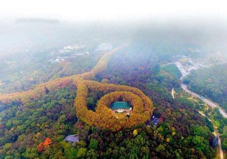 کاخ زمرد در چین