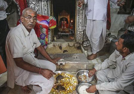 در هندوستان مذاهب گوناگونی وجود دارد