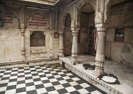 معبد موشهای مقدس در هندوستان