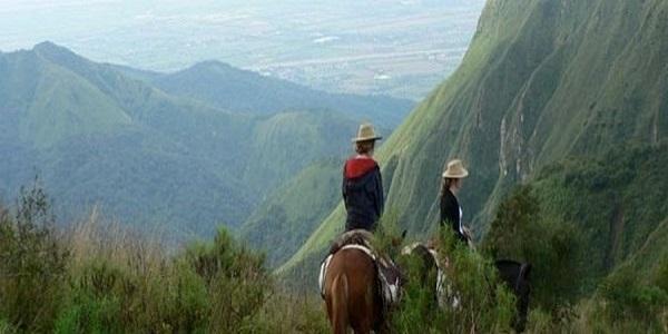 جنگل ابر سالتا، آرژانتین