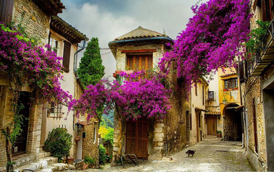 شهر کوچک پروانس (Provence)، فرانسه