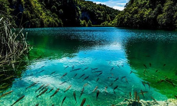 دریاچه Plitvice