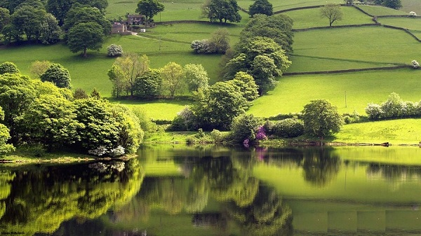 دریاچه Tranquil