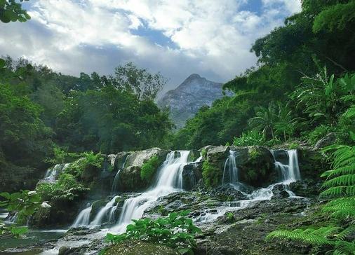 آبشاری در زیر دریا درجزیره موریس