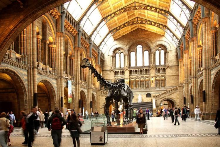 موزه تاریخ طبیعی لندن (The Natural History Museum)