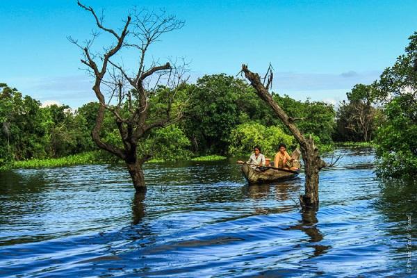 دریاچه کامپونگ پلاک، کامبوج