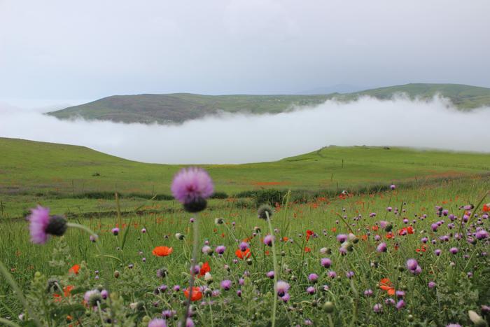طبیعت زیبا و دیدنی حنا علیشاه