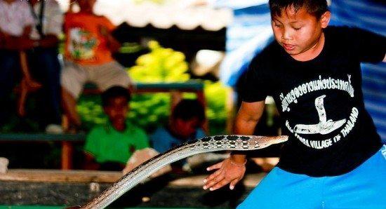 دهکده ترسناک مارها در تایلند