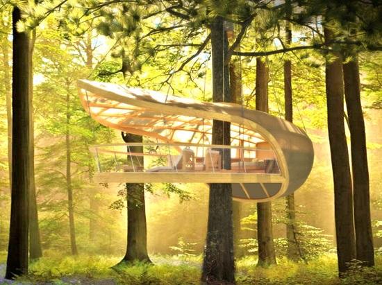 لوکس ترین خانه درختی جهان