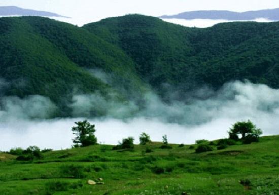 جنگلی در گلستان با 190 میلیون سال قدمت