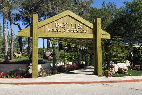 امکانات تفریحی هتل بلیس دلوکس بلک آنتالیا (باغ وحش کوچک)