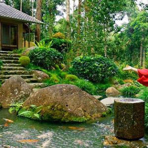 دهکده ژاپنی ها (غذا دادن به ماهی ها)