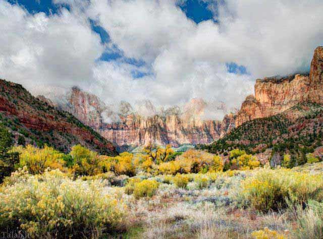 زیباترین بیابان ها در ایالات متحده آمریکا