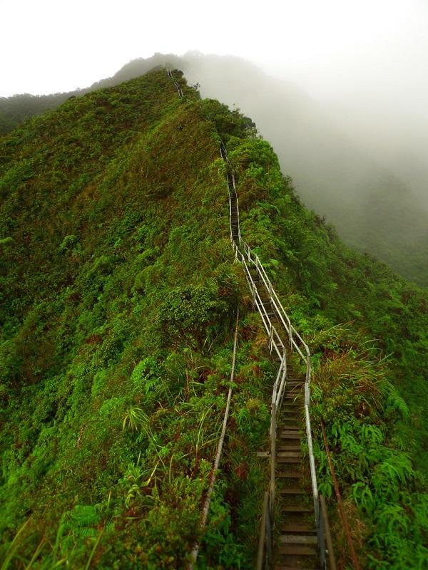 پله های هایکو