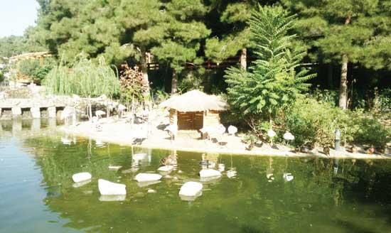 باغ پرندگان تهران؛ طبیعت بکر پایتخت