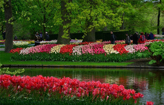 آمستردام؛ هلند
