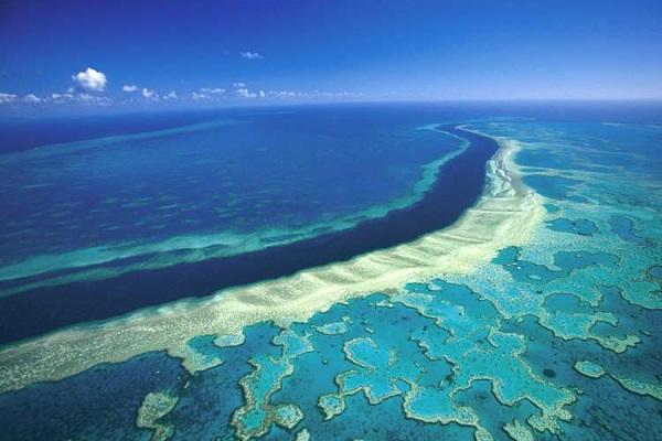 دیواره بزرگ مرجانی (Great Barrier Reef)