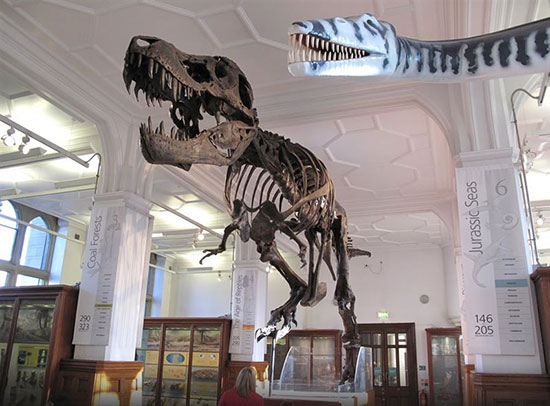موزه منچستر