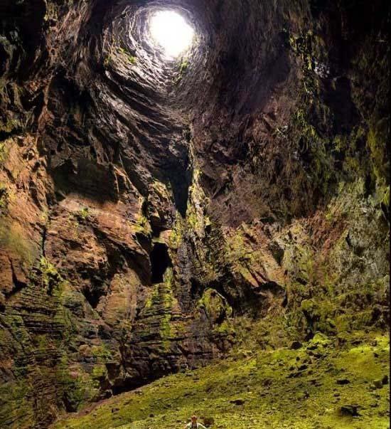 جنگلی عجیب در اعماق یک غار