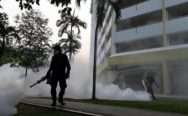 نگرانی مردم از ویروس زیکا در سنگاپور