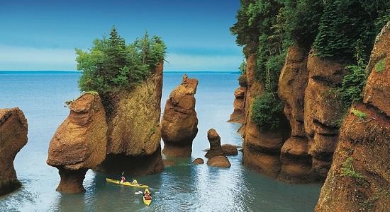 جاذبه های گردشگری کانادا ، خلیج فاندی