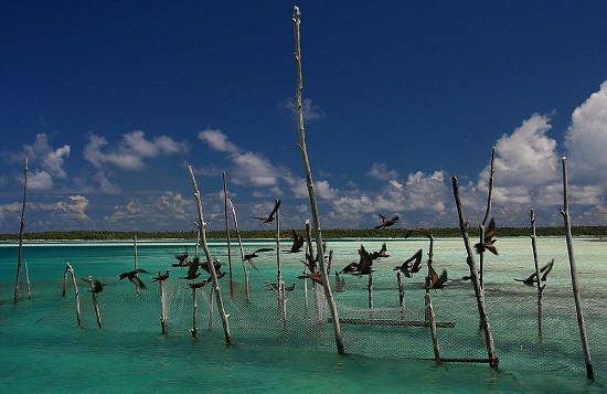 ماتایوا ، جزیره ی مرجانی زیبا و متفاوت