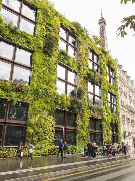 سرسبزتر کردن پاریس با کمک مردم