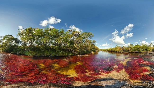 کانو کریستال بی نظیرترین رودخانه جهان