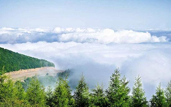روزهای پاییزی متفاوت در جنگل ابر