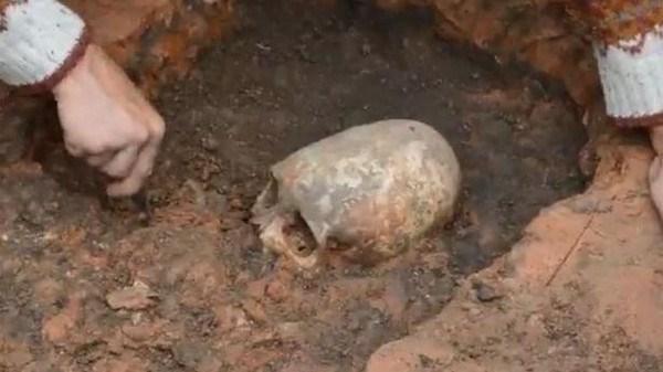 جمجمه ای 3000 ساله در تهران کشف شد