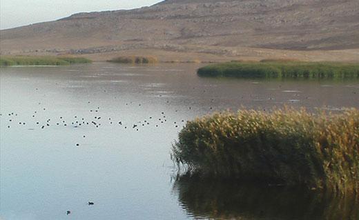 دریاچه جازموریان