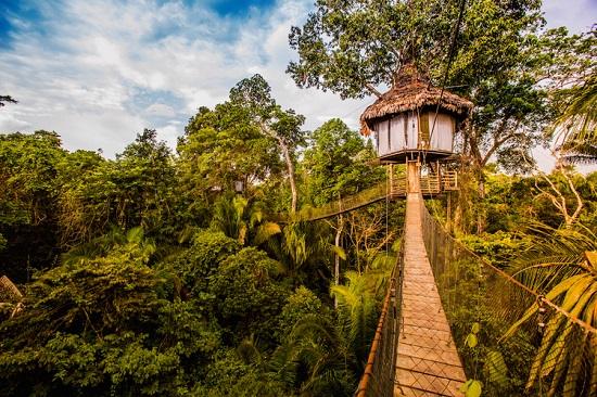 خانه درختی لوج رزورت (Treehouse Lodge Resort)، ایکیتوس، پرو